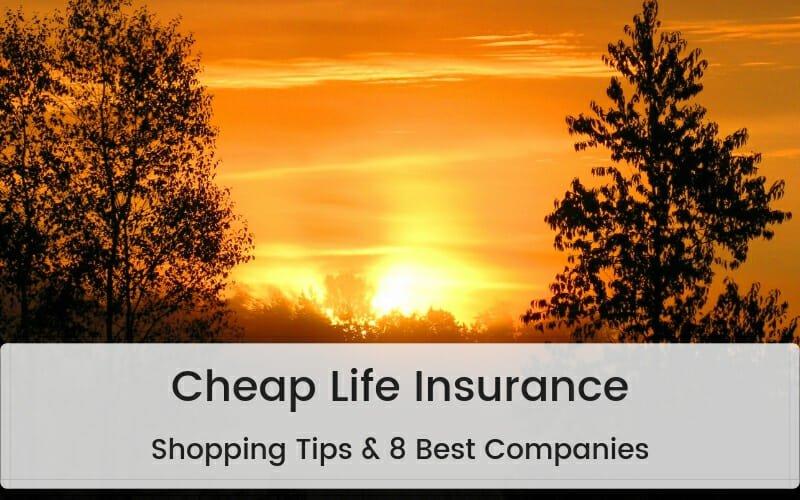 Best cheap life insurance companies