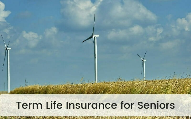 Best Term Life Insurance For Seniors In 2019 Compare Policies