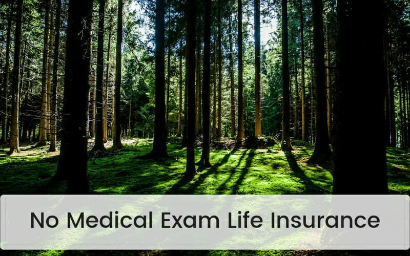 No Medical Exam Life Insurance